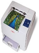 Xerox Phaser 6110 COLOR